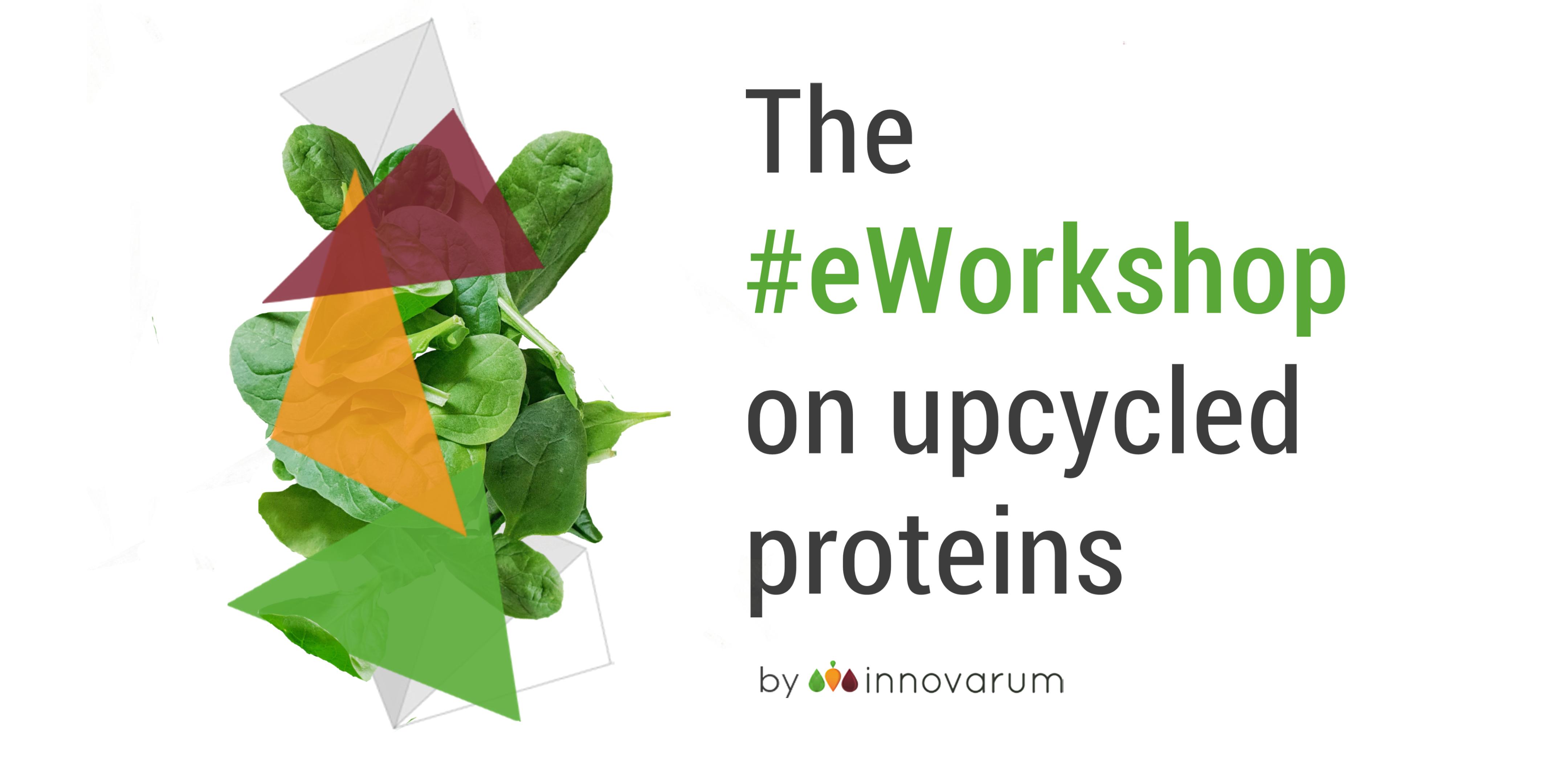 Valuewaste eworkshop upcycled proteins